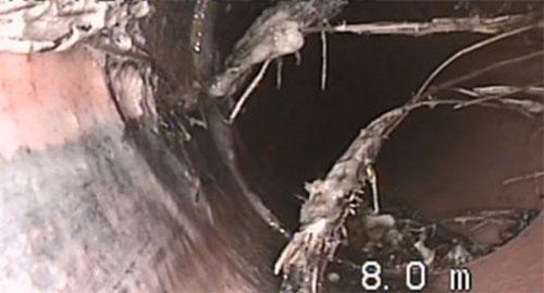CCTV_Inspection_Outcome-22