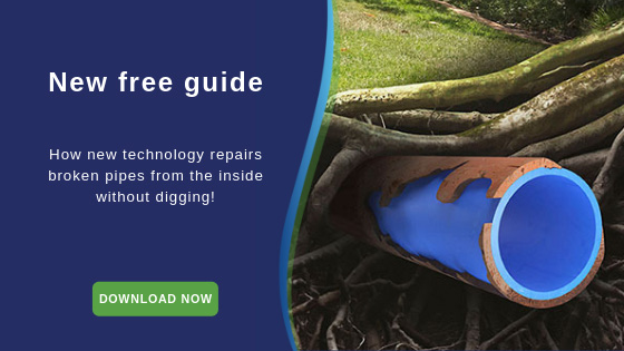 new-free-guide
