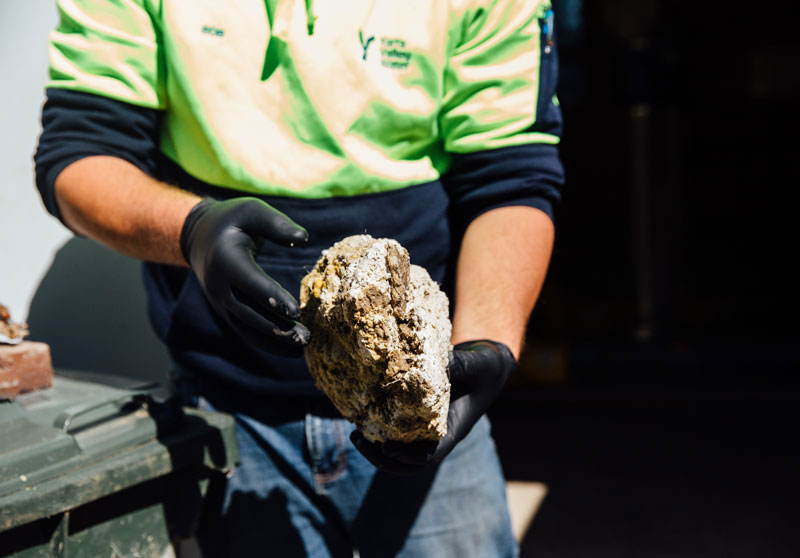 Everything you never wanted to know about Fatbergs